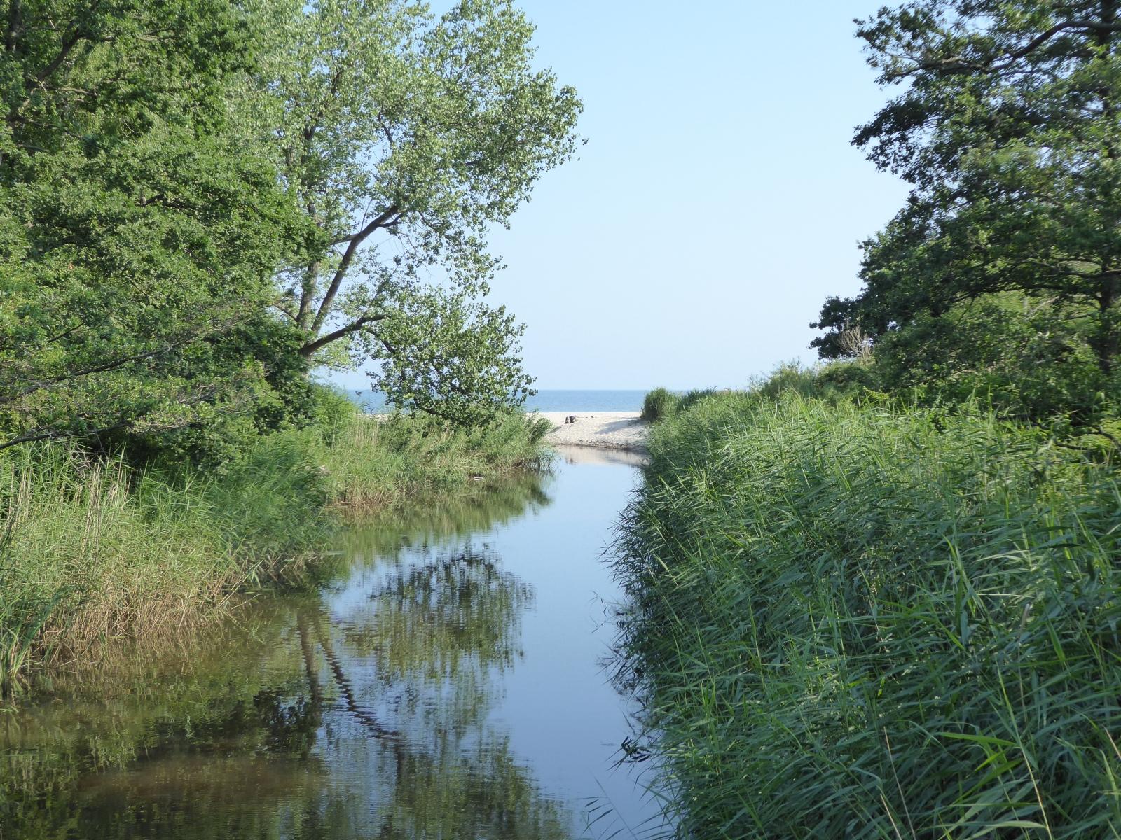 ...oder ein kleiner Bach mündet in die Ostsee