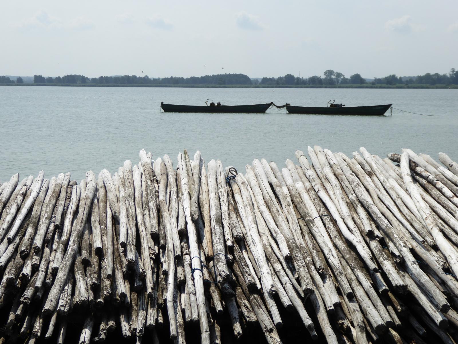 Idyllisch liegen die Schiffe auf dem flachen Binnensee und im Vordergrund Schwemmhölzer