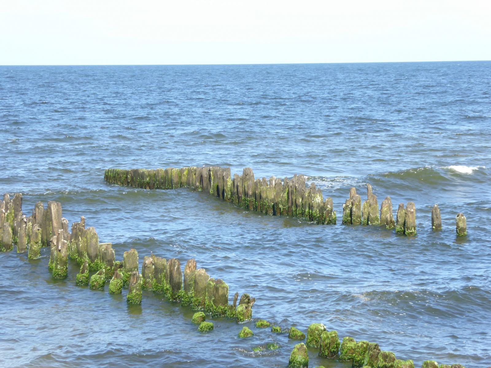 Diese Wellenbrecher haben schon bessere Tage erlebt, werden aber immer gerne von den Seevögln als Raststation eingenommen.