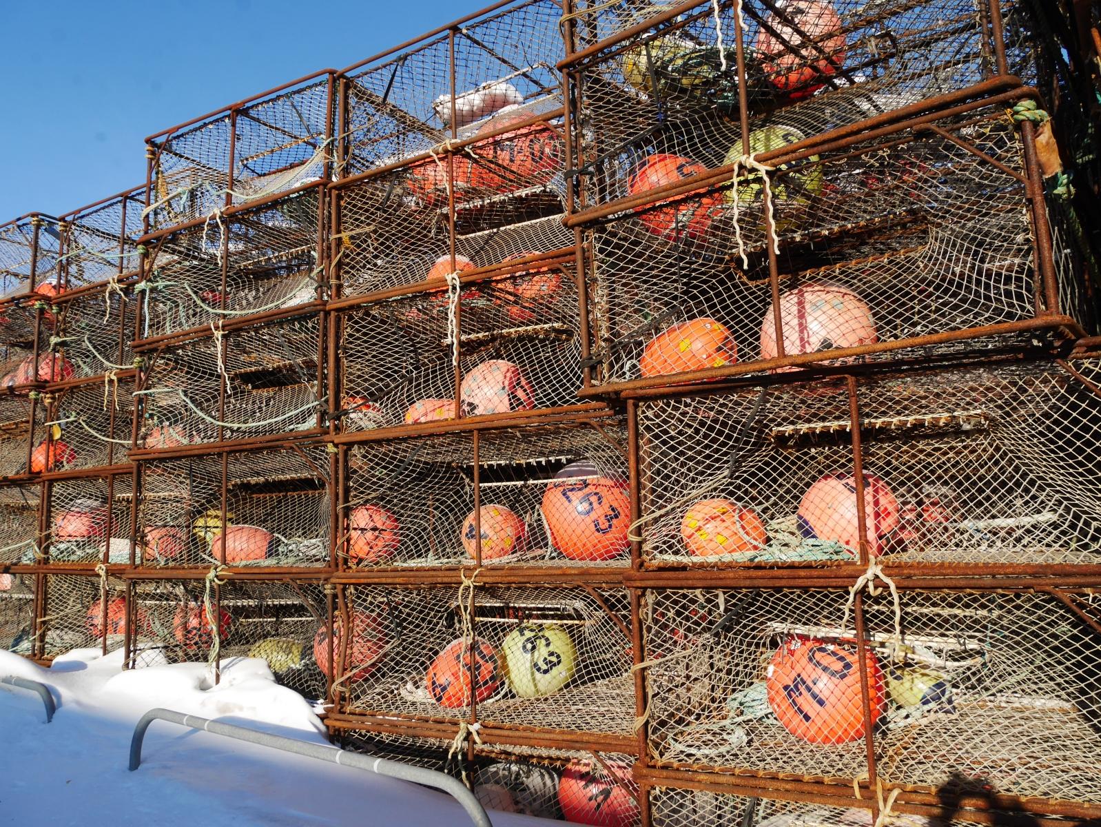 Diese Käfige werden im Winter an der Nordküste ausgebracht und dienen dem Fang der Königskrabbe.